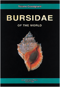 bursidae.jpg (51179 byte)